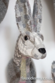 Textile Taxidermy, fauxidermy, textile art, faux taxidermy, helly powell textile artist, melin tregwynt, year of myths and legends, visitwales, beasts of the mabinogion, Hare, Mabinogion,