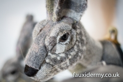Textile Taxidermy, fauxidermy, textile art, faux taxidermy, helly powell textile artist, melin tregwynt, year of myths and legends, visitwales, beasts of the mabinogion, L Hare, Mabinogion,
